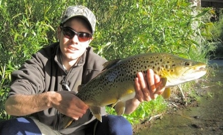 Example of trout caught in New Zealand river