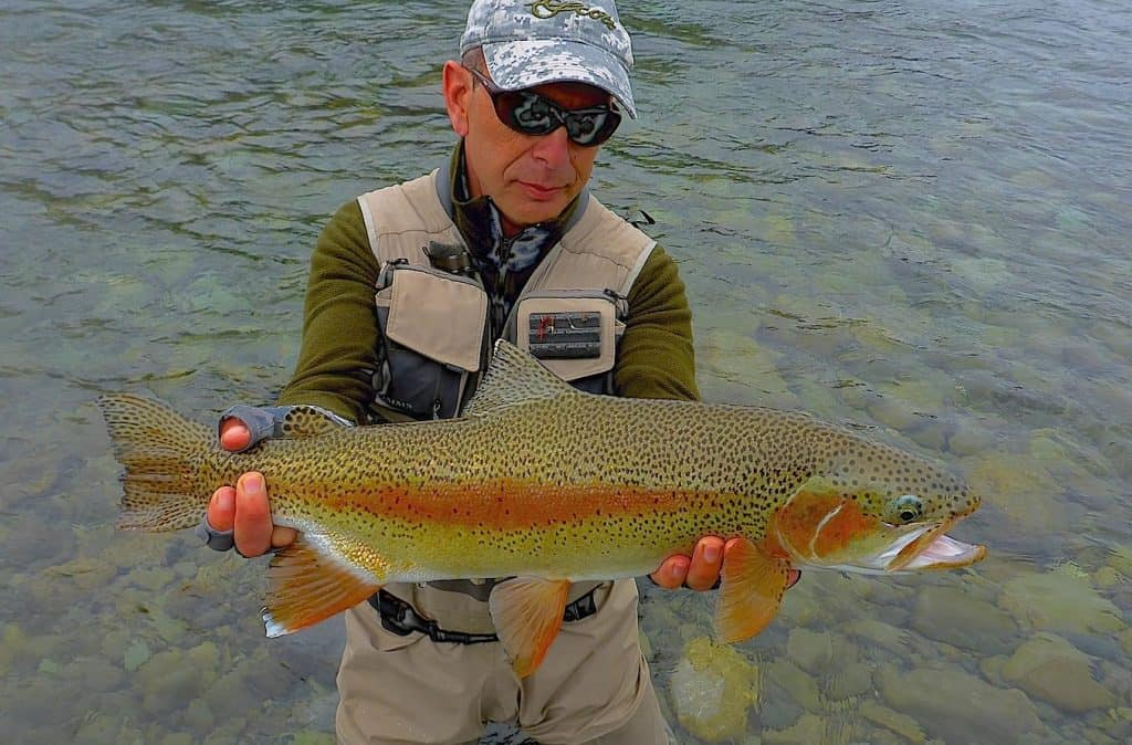 Fly fishing blog troutlands for Backcountry fly fishing