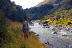 Fly fishing New Zealand river