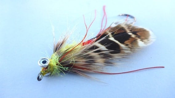 Winter Fishing - Fly Tying - and thoughts about the upcoming season - Troutlands