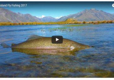 flyfishingvideo